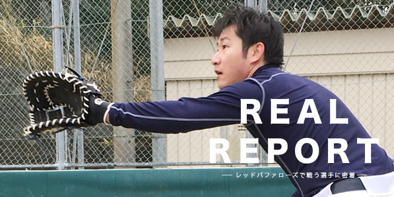 REALREPORT7