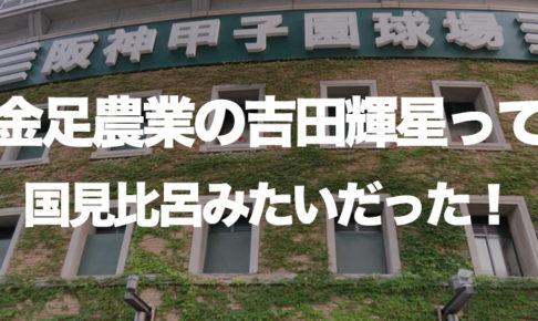 金足農業の吉田輝星って国見比呂みたいだった!